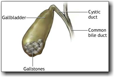 controlling-my-mind-gallbladder